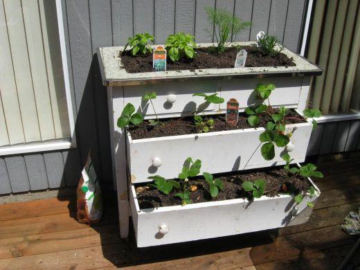 Garden Design Garden Design with Tutorial for building a raised